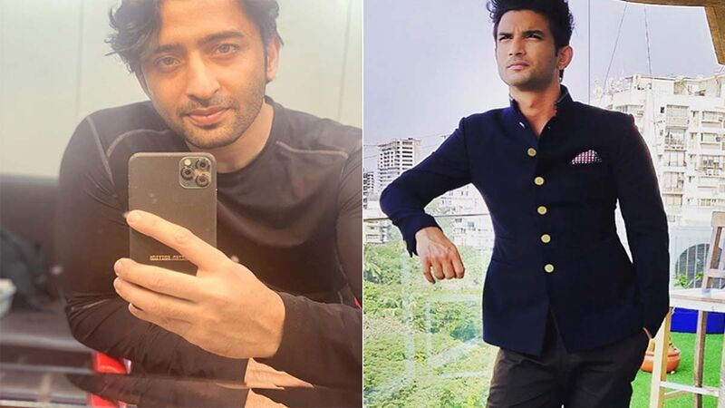 Pavitra Rishta 2: Shaheer Sheikh On Fans Being Upset With Him For Playing Manav Earlier Played By Late Actor Sushant Singh Rajput, Says 'I Feel They Don't Have To Replace Him With Me'