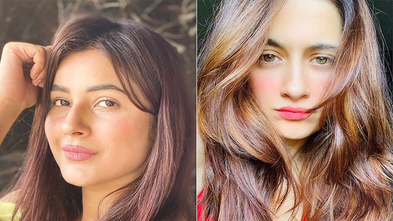 Shehnaaz Gill And Sanjeeda Shaikh Are Giving Fans The Sunday Feels Thanks To Their Happy Clicks; Netizens Hail Their 'Natural Beauty'