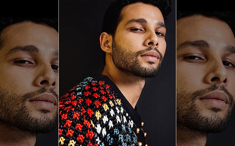 Gully Boy's MC Sher Aka Siddhant Chaturvedi's Craze Leads His Female Fans To Altering Their Tinder Bios
