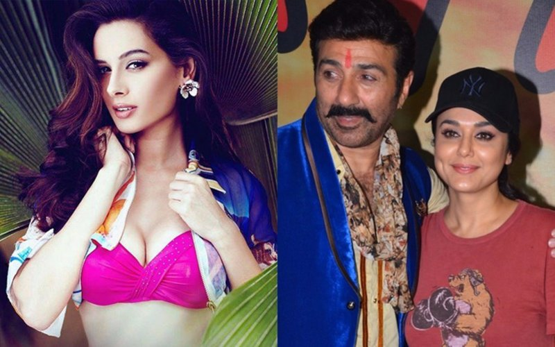 Evelyn Sharma Walks Out Of Sunny Deol-Preity Zinta's Bhaiyyaji Superhitt