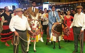 IIFA Fever: Shahid-Farhan arrive on the green carpet on Donkeys!