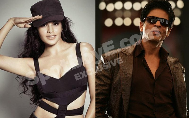 Jacqueline opposite SRK in Don 3 ?