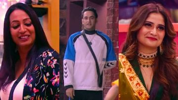 Bigg Boss 13: Kashmera Shah-Vikas Gupta Fight; Former Accuses Mastermind Of Creating A Rift Between Her And Arti Singh