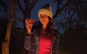 THIS Is What's Keeping Alia Bhatt Busy Amid Her New Years Getaway To Ranthambore; It's NOT Her Boyfriend Ranbir Kapoor
