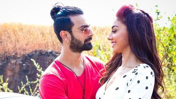 Bigg Boss Fame Ashmit Patel-Mahekk Chahal Confirm SPLIT After 5 Years Of Togetherness; Call Off Their Engagement