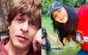 After IPL 2020, Shah Rukh Khan, Preity Zinta, And More To Own Teams In Lanka Premier League?
