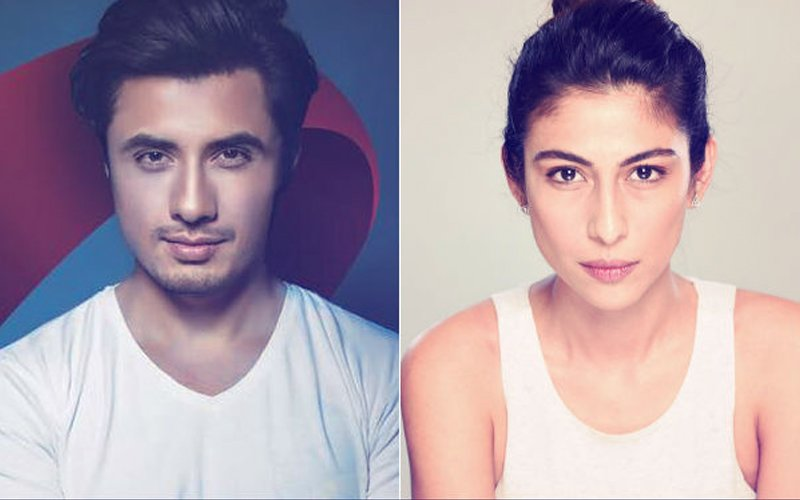 Apologise Or Cough Up Rs 100 Million; Ali Zafar Files Defamation Case Against Meesha Shafi