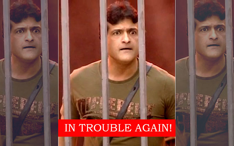 Armaan Kohli Arrested For Illegal Possession Of 41 Scotch Whisky Bottles