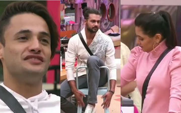 Bigg Boss 13 UNSEEN UNDEKHA: Asim, Rashami, Vishal Discuss Life After BB, Plan A 'Breakfast' Date - Video