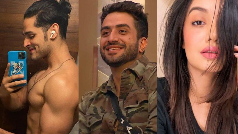 Bigg Boss 14: Exes Priyank Sharma And Divya Agarwal Extend Support To Aly Goni; Ask Fans To Vote For Him