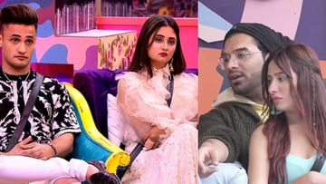 Bigg Boss 13: Countdown To GRAND FINALE- Paras Gifts Mahira A Perfume,  Asim-Rashami Exchange Presents