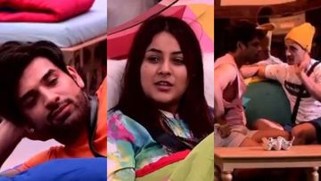 Bigg Boss 13: Shehnaaz Flips Sides From Sidharth Shukla To Paras Chhabra, Asim Riaz Tells Her Cunning Strategy