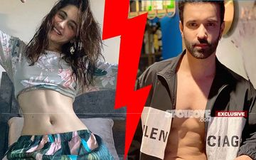 SHOCKER! Did Sanjeeda Shaikh Tell Aamir Ali She's Going To Her Mom's Place And Never Returned?- EXCLUSIVE