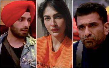 Bigg Boss 14: Shehzad Deol Compares Eijaz Khan To A Snake; Tells Pavitra Punia To Never Trust Him