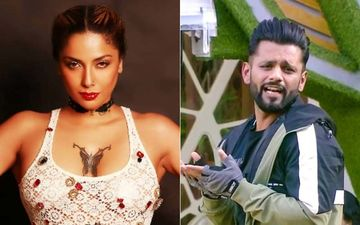Bigg Boss 14: Diandra Soares Says Rahul Vaidya Should Be Slapped After An Old Tweet Saying, 'Hitting A Woman's Ass During Sex' Is OK, Surfaces