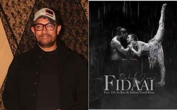 Fidaai: Aamir Khan Is All Praise For Elli AvrRam And Salman Yusuff Khan; Finds Their Performance 'Outstanding'