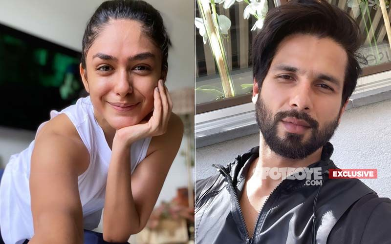 Mrunal Thakur: 'I Feel Like I Have Worked With The Entire Shahid Kapoor's Family' - EXCLUSIVE