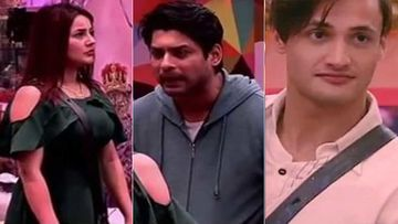 Bigg Boss 13: Shehnaaz Fights With Sidharth Shukla, SHOCKINGLY Supports Asim Riaz; Tables Have Turned
