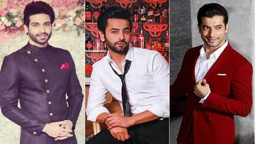 Republic Day 2020: Vijayendra Kumeria, Shashank Vyas, Ssharad Malhotra On Patriotism And Pride