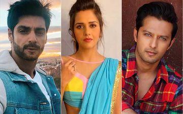 Lalbaugcha Raja 2020 Cancelled Due To Coronavirus: TV Actors Karan Wahi, BB 13's Dalljiet Kaur And Vatsal Seth Laud The Decision