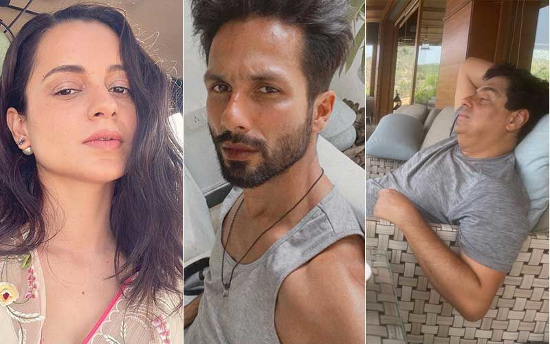 Kangana Ranaut Mentions 'Corona' While Shahid Kapoor Talks About Finishing A 'Piece Of Papaya'; Actors React To Ronnie Screwvala's Post