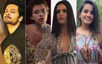6 Celebrities That You Need To Follow Right Away: Ali Faizal,  Kalki Koechlin, Natasa Stankovic, Anita Hassanandani And More