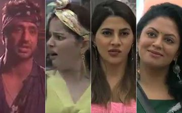 Bigg Boss 14 PROMO: House Captain Aly Goni Nominates Rubina Dilaik, Nikki Tamboli And Kavita Kaushik; Leaves Rubina Shocked-WATCH