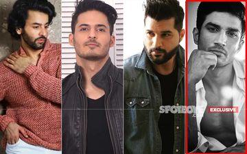 Sushant Singh Rajput's Death: TV Actors Shashank Vyas, Mohit Malhotra And Vikas Sethi Demand Punishment For The Culprit-EXCLUSIVE