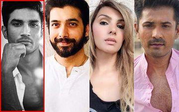 Sushant Singh Rajput First Death Anniversary: Sharad Malhotra, Somy Ali, Mrunal Jain And Nivedita Basu Hope The Late Actor Gets Justice