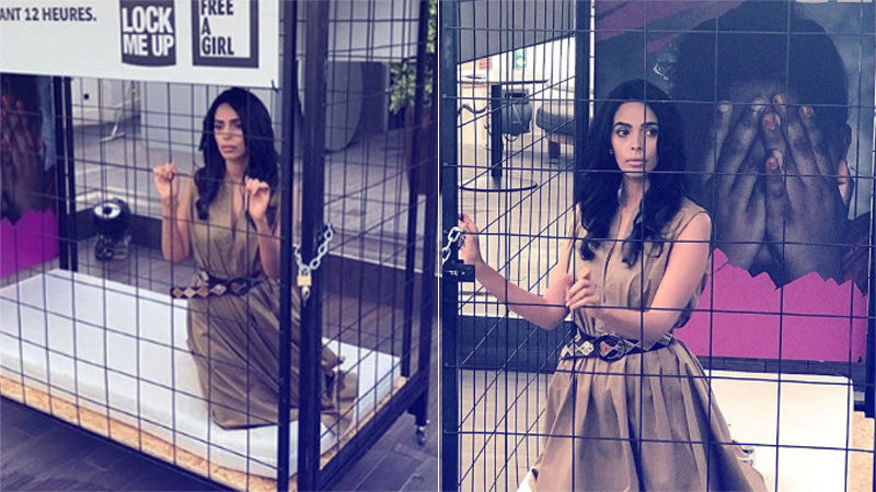 Mallika Sherawat Locks Herself In A Cage For 12 Hours!