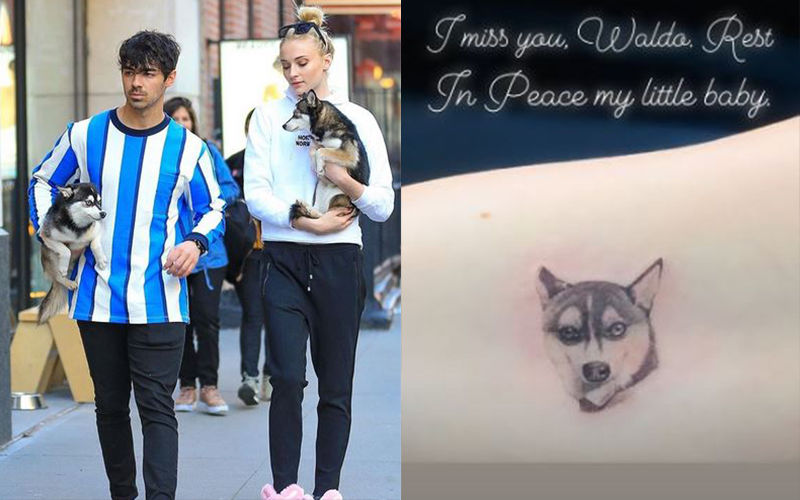 Sophie Turner And Joe Jonas Get Matching Tattoos In The Memory Of Their Late Dog Waldo