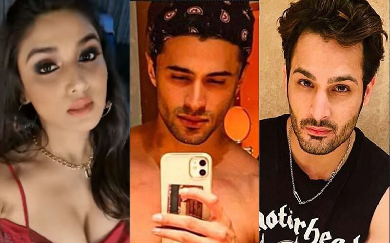 Bigg Boss 15: Donal Bisht Picks Righteousness Over Manipulation, Chooses Ieshaan Sehgaal Over Umar Riaz