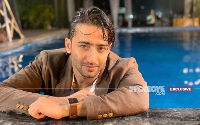 Shaheer Sheikh: I Don't Want To Become A Star, Like To Keep It Low Profile'- EXCLUSIVE