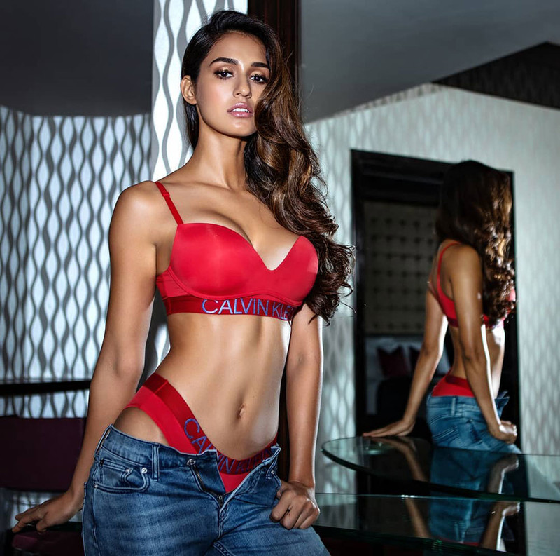 Disha Patani HOT Photos: This Babe In Bikini Will Make You Go Weak ...