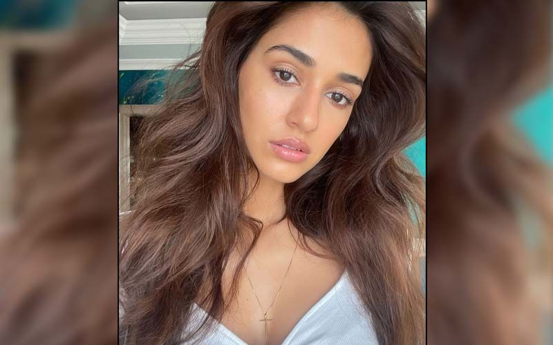 Tiger Shroff Drops An Epic Comment On Disha Patani's Latest Sizzling Photos; Krishna Shroff Also Reacts To The Actress' Instagram Post