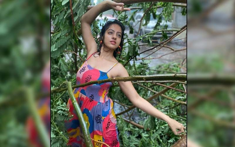 Diya Aur Baati Hum's Deepika Singh Goyal Faces The Wrath Of Netizens, Gets Slammed For Dancing Amid Uprooted Trees; 'What A Shame' - WATCH