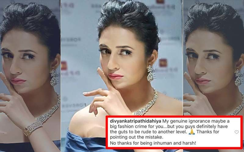 "Divyanka Tripathi's 'Gutsy' Reply To Diet Sabya's #GandiCopy Post: ""You Guys Are Rude To Another Level"""
