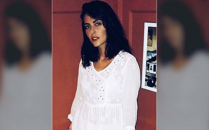 Koka Kola: Mandana Karimi Accuses Getting Harassed On Film Set; Producer Calls Her Behaviour 'Unprofessional'