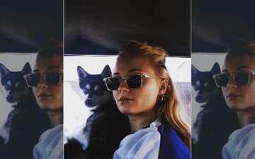 Sophie Turner And Joe Jonas' Dog Waldo Dies In A Freak Accident