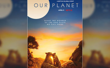 Our Planet Is A Must-Watch Netflix Show For Everyone - Here's Why