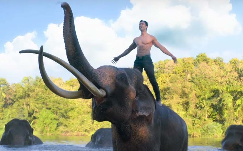 Junglee Trailer: Vidyut Jammwal Protects His Animal Kingdom From Poachers In This Action-Fest