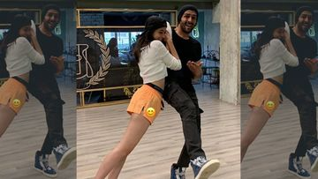 Happy Birthday Kartik Aaryan: Ananya Panday's Wish For Her 'Tiki' Is Cheesy And Flirty AF – PIC