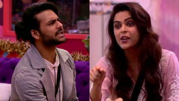 Bigg Boss 13: 'Vishal Aditya Singh Has Hit Me Several Times In Past', Reveals Madhurima Tuli