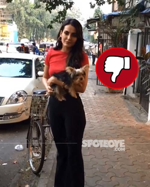 Mandana Karimi was spotted in the city with her pet dog