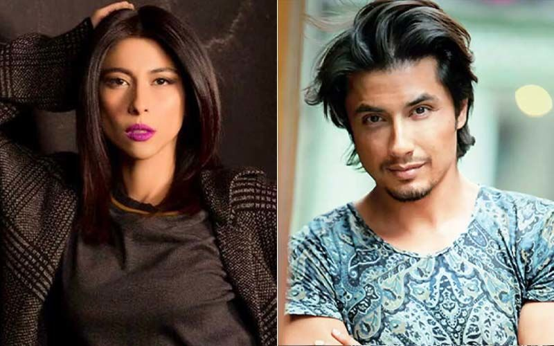 Court Dismisses Sexual Harassment Case By Meesha Shafi Against Ali Zafar