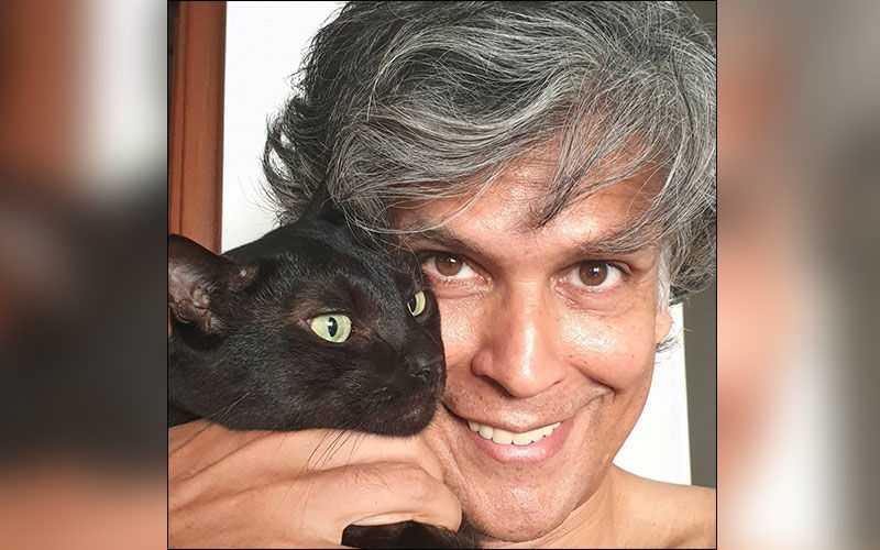 Milind Soman Does Superman pushups in new video, While Ankita Does Yoga, Checkout The Post