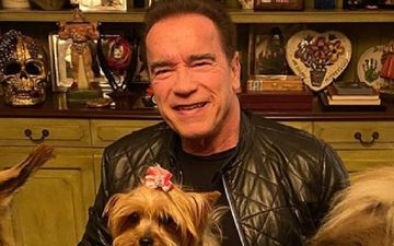 Arnold Schwarzenegger Photoshops His Son's Graduation Picture To Express His Happiness Amidst Lockdown