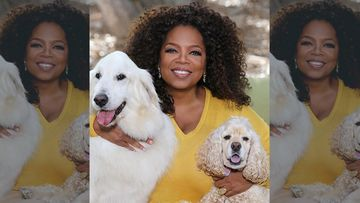 Oprah Winfrey Denies Being Arrested For Sex Trafficking; Calls It 'Some Awful FAKE Thing' As She Trends On Social Media