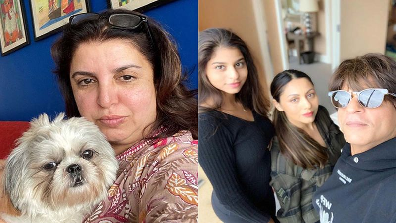 Farah Khan To Trolls: 'You Talk About Nepotism But Still Look Up For Pictures Of Shah Rukh Khan's Daughter Or Kareena's Son'