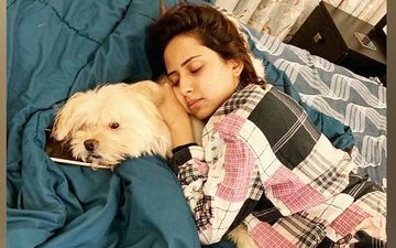Sargun Mehta's Adorable Post With Her Pet Will Sanitize Your Mood